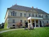 Zámek na Raduni.