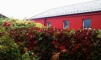 Barevný podzim ve Sviňákově:-)