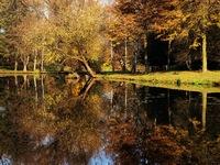 Možná poslední pořádné podzimní fotky mezi Svinovem a Polankou.